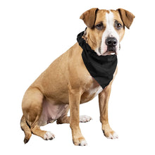 Load image into Gallery viewer, Qraftsy Plain Cotton Pets 5 Pcs Dogs Bandana Triangle Shape  - Large Pets (Black)