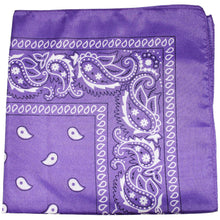 Load image into Gallery viewer, Paisley 100% Polyester Unisex Bandanas - 108 Pack - Bulk Wholesale