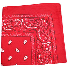 Load image into Gallery viewer, Pack of 12 Paisley Cotton Bandanas Novelty Headwraps - Dozen Available in Many Colors - 22 inches (Black)