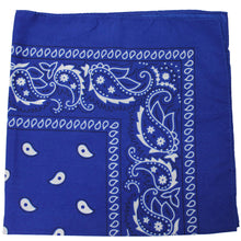 Load image into Gallery viewer, Mechaly Polyester Bandana - Paisley and Solid Colors - Pack of 4 (Paisley Black)