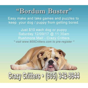 Boredom Buster-Crazy Critters