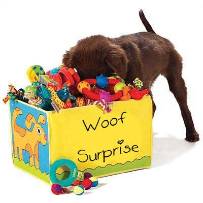 Woof Surprise: Dog Food + Toys & Treats ~ Every Month