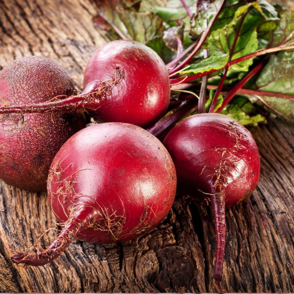 Red Beetroot 'Detroit Globe 2' - 100 Seeds
