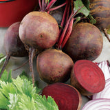Red Beetroot 'Boltardy' - 100 Seeds