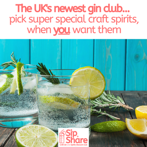 Beginners guide to gin...