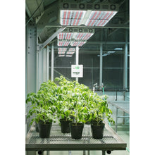 Load image into Gallery viewer, Apache Tech AT600 LED Grow Lights