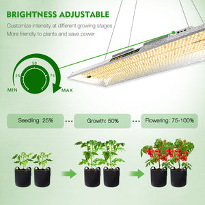 Mars Hydro TSL 2000 Indoor Full Spectrum 300W 2ftx4ft 3ftx5ft coverage LED Grow Lights
