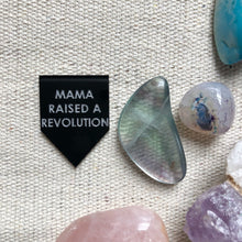 Load image into Gallery viewer, mama raised a revolution pin by rayo & honey