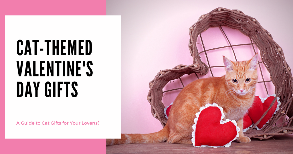 Cat-Themed Valentine's Day Gifts for Cat Lovers