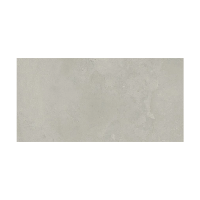 Riems Silver Matt - Wall & Floor Tile - 60 x 30 cm