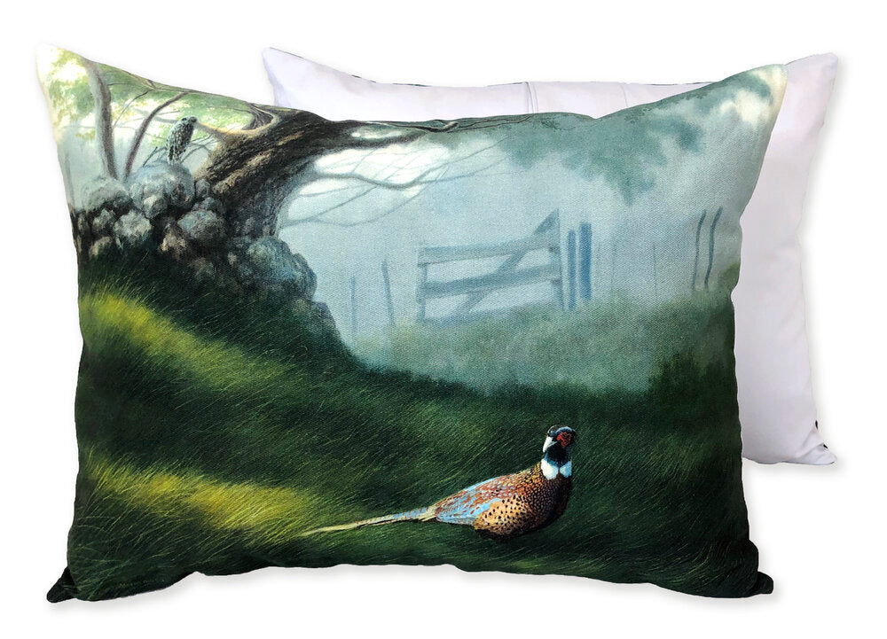 Phred and Phriend Pillows, 12