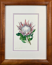Load image into Gallery viewer, Protea Watercolor Print I