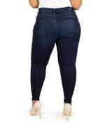High Rise Fab Ab Slim Fit Skinny, Plus (Uncover Wash) Hover Image