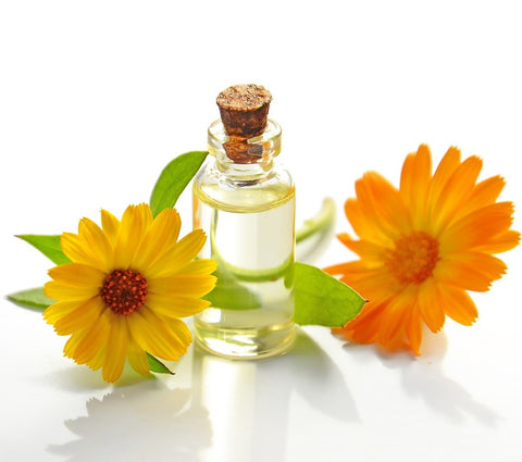 Calendula Flower Infused in Sunflower Oil - Certified Organic