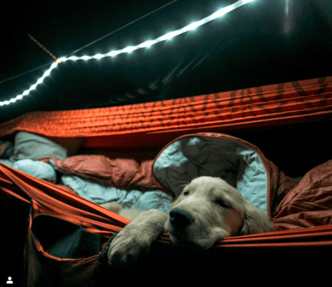 Luminoodles in Camping Ideas