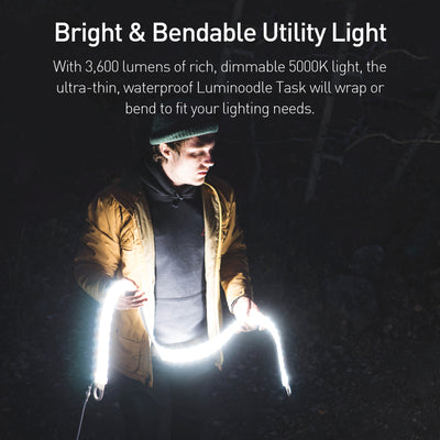 Luminoodle Task