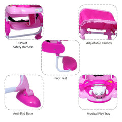 1st Step Swing With 3 Point Safety Harness And Adjustable Canopy - Pink