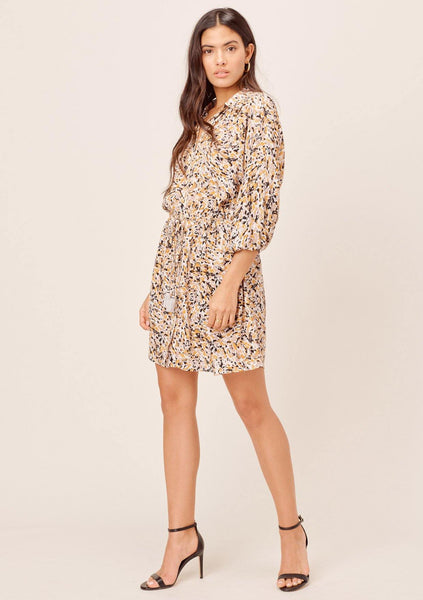 Ezra Animal Print Shirt Dress