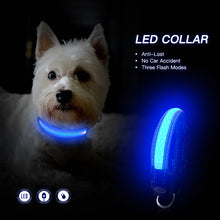 Load image into Gallery viewer, Small LED Dog Collar