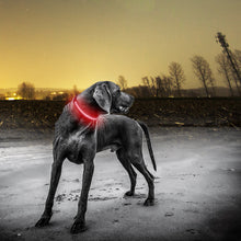Load image into Gallery viewer, Red Shining LED Dog Collar