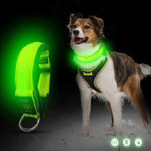Load image into Gallery viewer, Green Padded LED Dog Collar