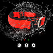 Load image into Gallery viewer, Water Resistant Dog Collar