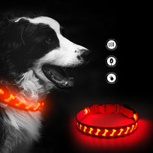 Load image into Gallery viewer, Red Bone print LED Dog Collar