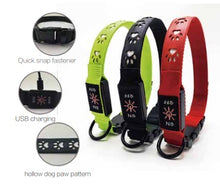 Load image into Gallery viewer, USB Chargeable Dog Collar