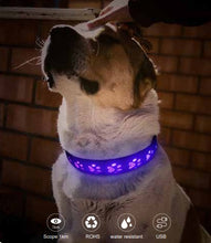 Load image into Gallery viewer, Dog Paw Design LED collar