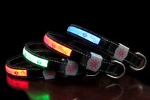 Load image into Gallery viewer, Four colours of LED Lycra Dog Collar