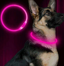 Load image into Gallery viewer, Pink German Shepherd LED Collar