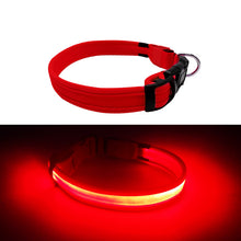 Load image into Gallery viewer, Red LED Dog Collar at night