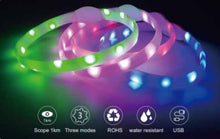 Load image into Gallery viewer, Collection of LED Dog Collars