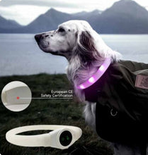 Load image into Gallery viewer, Dog wearing Silicone LED Collar