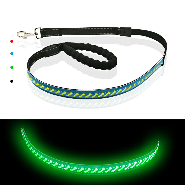Blue LED Dog Lead