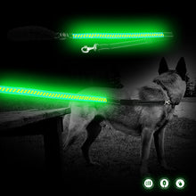 Load image into Gallery viewer, Green LED Dog Lead