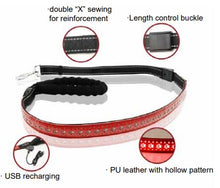 Load image into Gallery viewer, Red LED Dog Leash