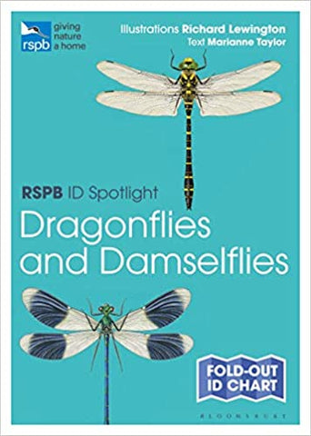 RSPB ID Spotlight - Dragonflies and Damselflies
