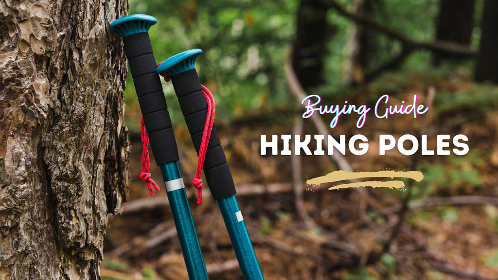 Into the Wild: The Truth About Trekking With Hiking Poles