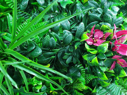 green wall for sale