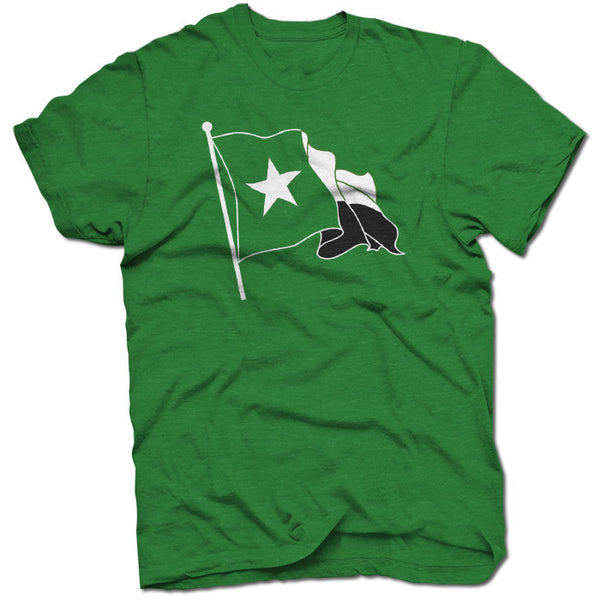 The Green Texas Flag