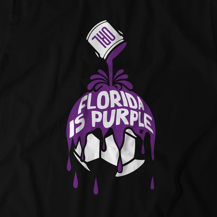 Florida is Purple