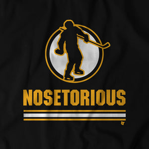Nosetorious