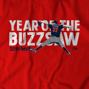 Year of the Buzz Saw