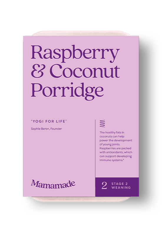 Mamamade Raspberry & Coconut Porridge For Babies and Toddlers