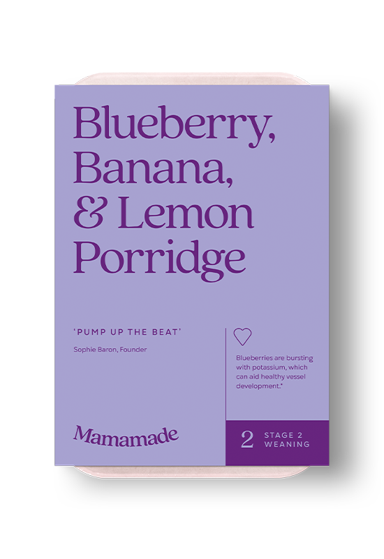 Mamamade Blueberry, Banana & Lemon Organic Porridge For Babies