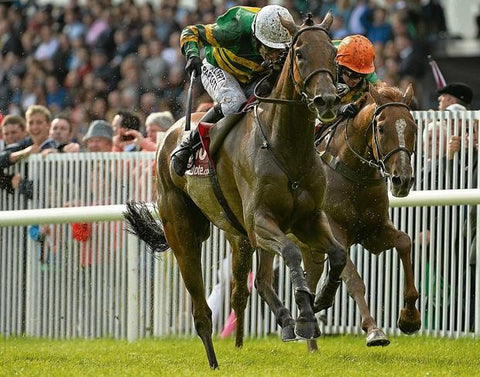Carlingford Lough and Tony McCoy (White Cap) winning the 2013 Galway Plate from Quantitativeeasing and Niall Madden