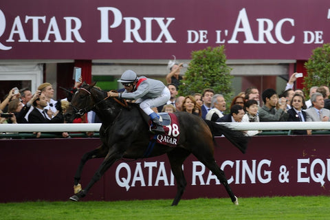 Treve and Thierry Jarnet winning the 2013 Arc De Triomphe at Longchamp