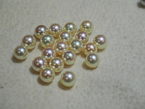 Natural-Japanese-Cream-Akoya-Pearl-Stud-Earrings-For-Online-Sale