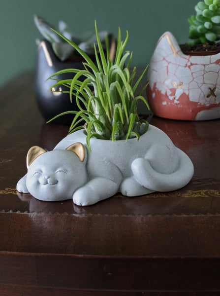 House Cat Concrete Planter | White with Gold Ears